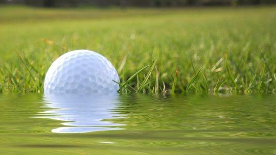Best Golf Ball Retrievers