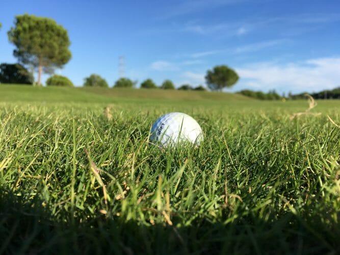 Golf-Rough